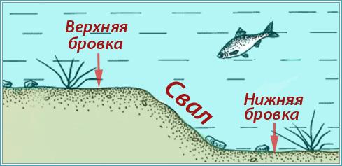 """изображение-схема """"где ловить белоглазку"""""""
