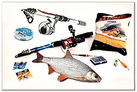 Рыба плотва обыкновенная, Ловля плотвы