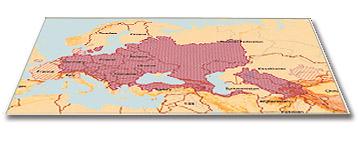 изображение карты ареала сома