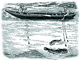гравюра рыбалки на сома